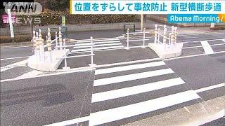 東京・清瀬市 高齢者の事故防ぐ横断歩道を新設(20/02/05)