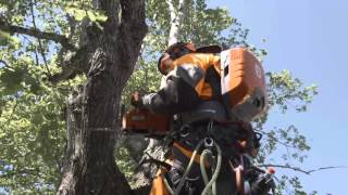 Learn about Husqvarna Pro Battery Chainsaws