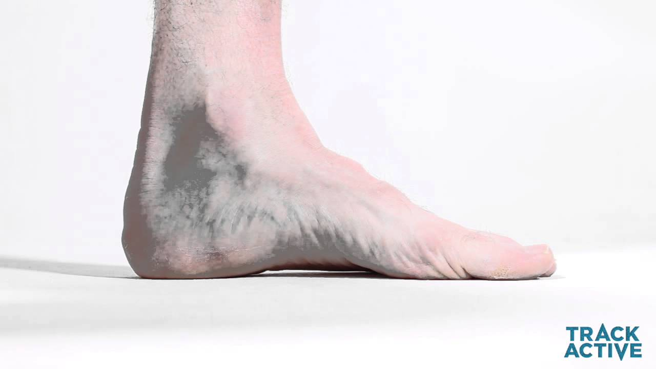 How To Strengthen the Arch of Foot   Foot & Ankle