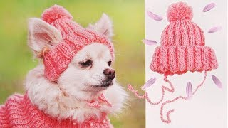 ШАПКА ДЛЯ СОБАКИ | DIY HAT FOR DOG