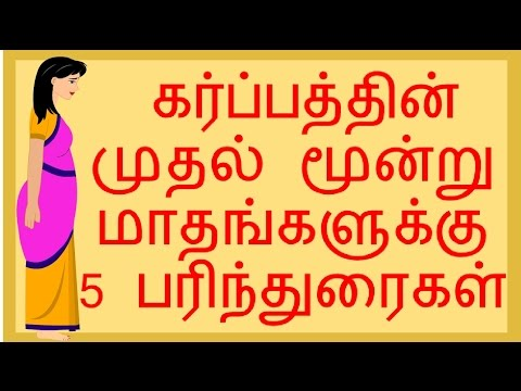 5 Tips for first trimester Pregnancy   Tamil