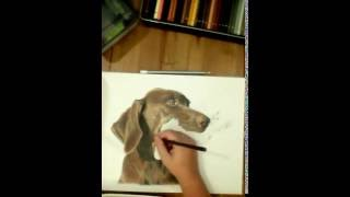 Drawing a GSP
