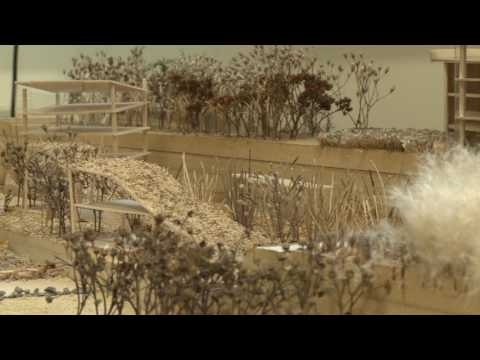 DC120 - Study Landscape Architecture in UCD's School of APEP - University College Dublin - UCD
