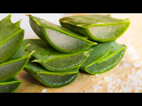 6-incredible-benefits-of-aloe-vera-for-hair,-skin-and-weight-loss-|-health-and-nutrition