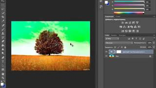 Урок №14. Работа с цветом в Фотошопе – инструменты «цветовой тон» и «насыщенность».