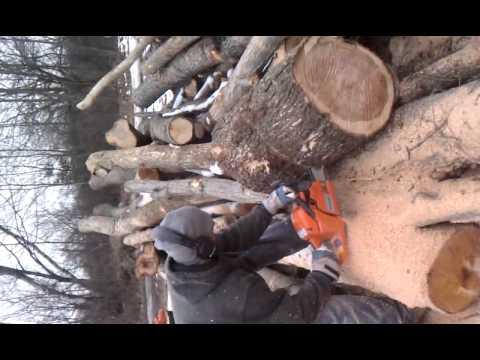 tree-service,-firewood-sales---clifton-park,-ny-ballston-spa,-ny-saratoga,-ny