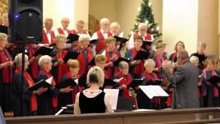 Finlands självständighetsdag hedrades med sång o musik i Töre