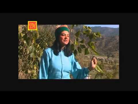 Teri Shangari Kullueri   New Himachali  Song   TM Music