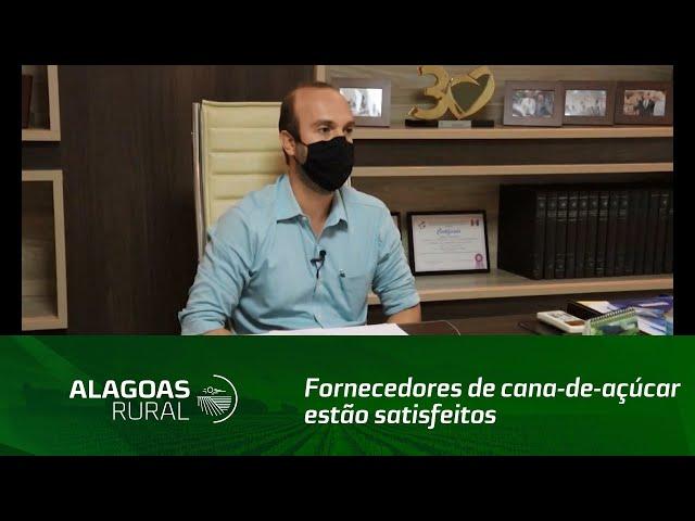 Fornecedores de cana-de-açúcar estão satisfeitos com a safra 2020/2021