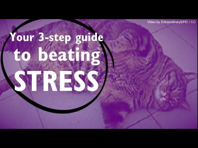 X EXPLAINED: Your 3-step stress-busting guide