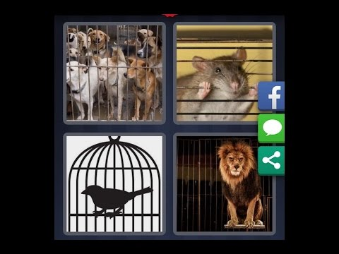 4 Images 1 Mot Niveau 712 Hd Iphone Android Ios Youtube