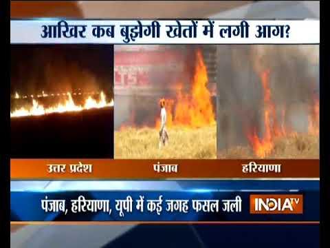 Punjab, Haryana, Uttar Pradesh farmers hit as massive fire leads to crop damage