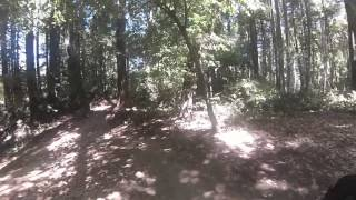 UCSC Trails GoPro