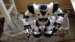 Подарок в кружок робототехники (Большой робот! за 6$ )