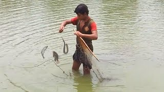 Net Fishing || Unbelievable net Fishing || Traditional Net Fishing by Fishing Mania