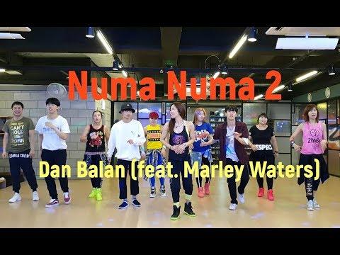 I LOVE ZUMBA / 스트릿 댄서들의 첫 줌바영상 / Numa Numa 2 - Dan Balan (feat. Marley Waters)