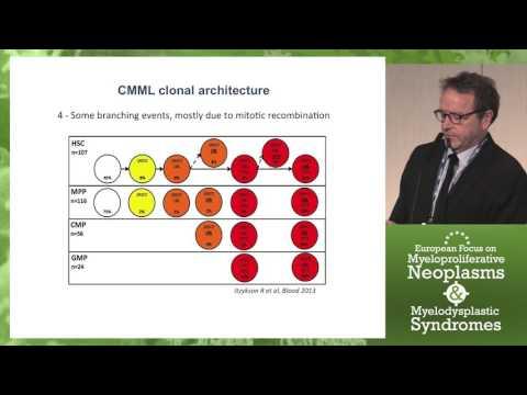 Genetic Basis of Chronic Myelomonocytic Leukemia (CMML)