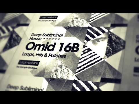 Omid 16B 'Deep Subliminal House' - House Drum Samples & Music Loops