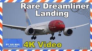 RARE! Norwegian Dreamliner Boeing 787 lands infront of Flyvergrillen at Copenhagen Airport - 4K