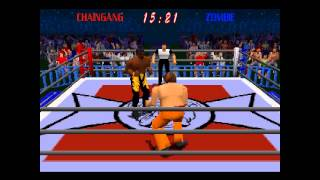 Power Move Pro Wrestling ... (PS1)