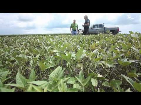 Sustainability - Farming For The Next Generation