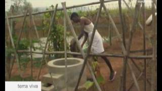 euronews Terra viva - Farmers in India convert to organic cotton