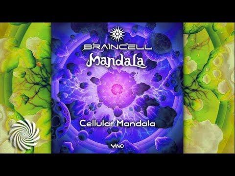 Mandala & Braincell - Cellular Mandala