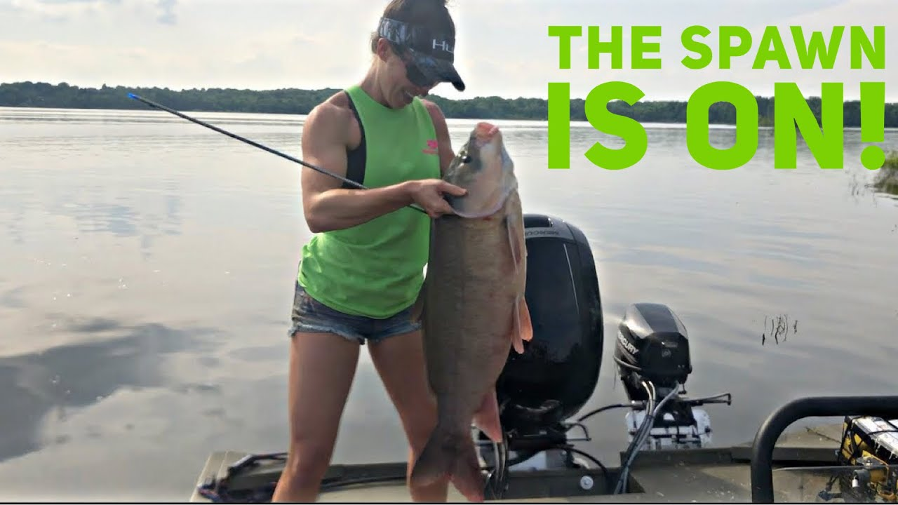 The SPAWN IS ON! EPIC BOW FISHING With Bowmar Bowhunting 2018