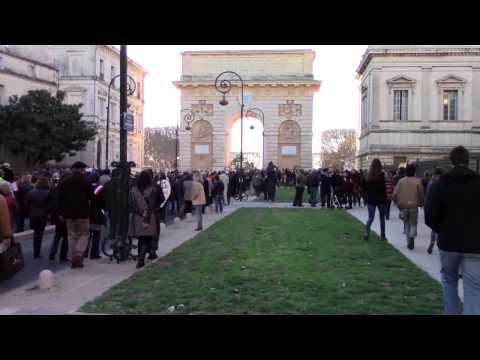 #JeSuisCharlie: Voix de la Foule- Voices from the Crowd (English subtitles)