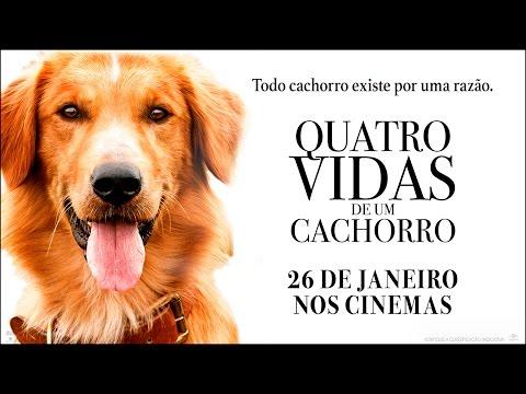 """Quatro Vidas de Um Cachorro - Spot Every Life 20"""" (26 de Janeiro)"""