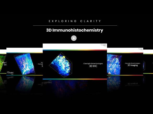 3D Immunohistochemistry