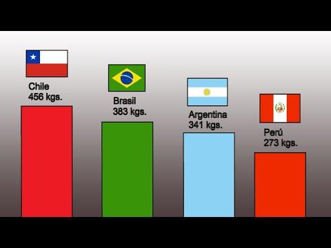 Chile y el Problema de la Basura