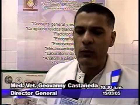 Hospital Veterinario Humberto Ramìrez Daza. Universidad Centroccidental Lisandro Alvarado