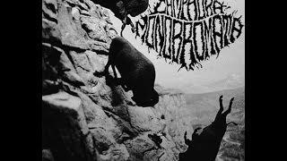 Camphora Monobromata - Mince From Live [FULL ALBUM]