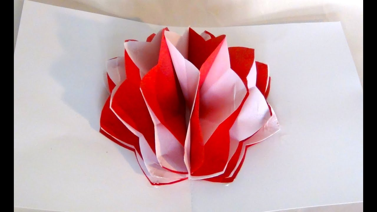 How to make a pop up paper flower youtube mightylinksfo