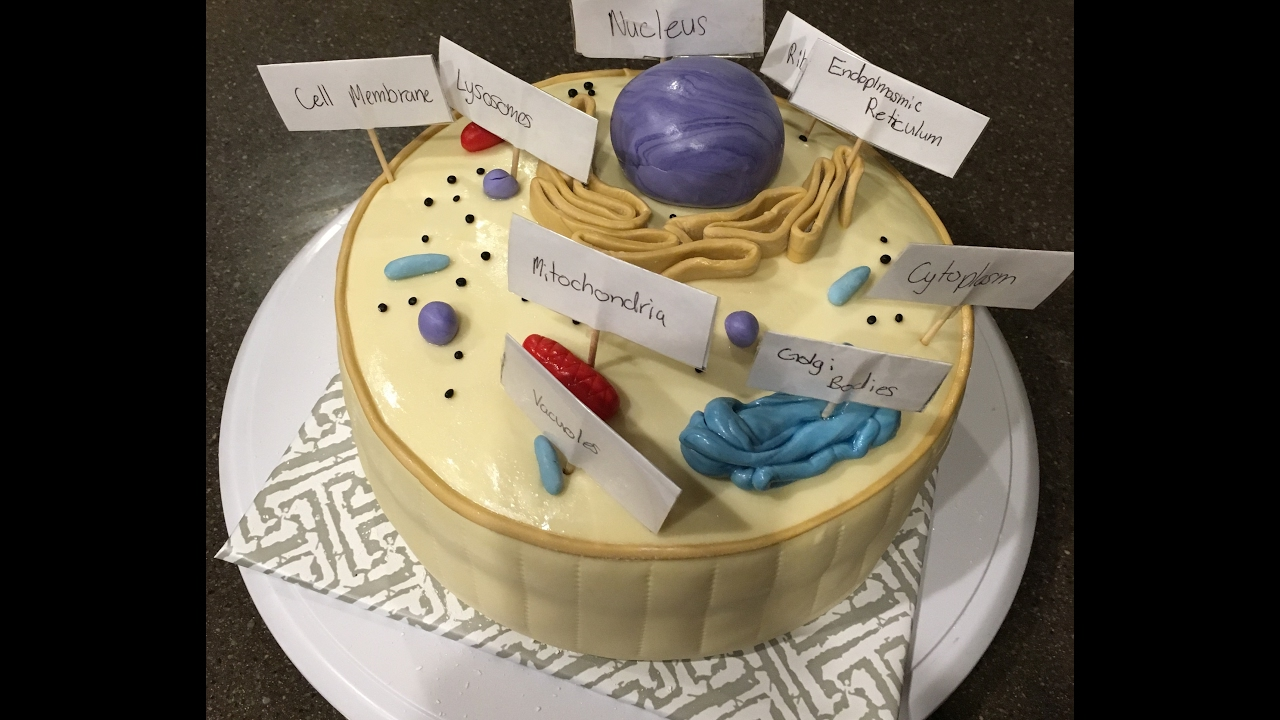 How To Make A Cell Out Of Cake