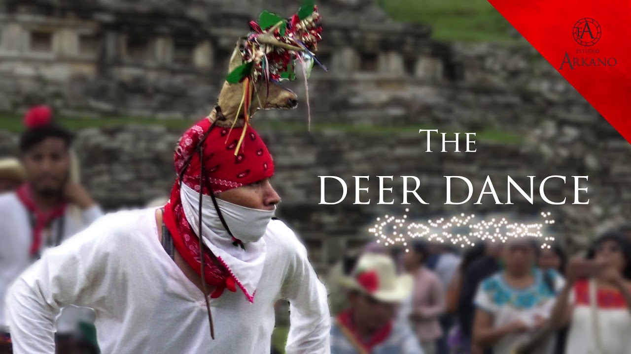 🎵 Best Native Mexican Song /  Yoreme people / The deer dance/ part 3