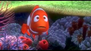 NEMO_Swimming Out to  - YouTube3