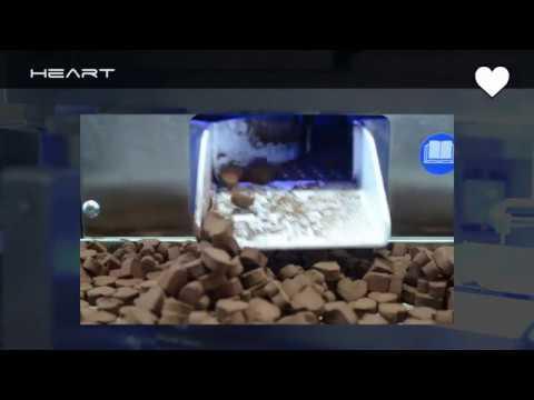 CHOCOFORM EXTRUDER SELMI + AUTOMATIC TRUFFLE PRODUCTION