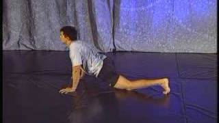 Frank Shamrocks Ultimate Home Workout