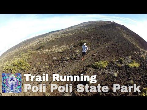 Training for the Honolulu Marathon - 2 Hour Run in Poli Poli State Park