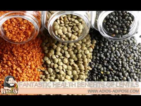 Adios-Adipose.com – Fantastic Health Benefits of Lentils