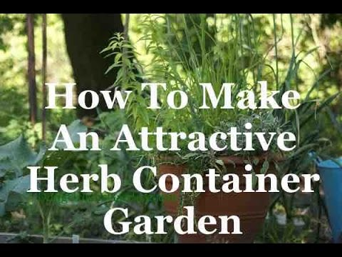 How To Make An Attractive Herb Container Garden - YouTube