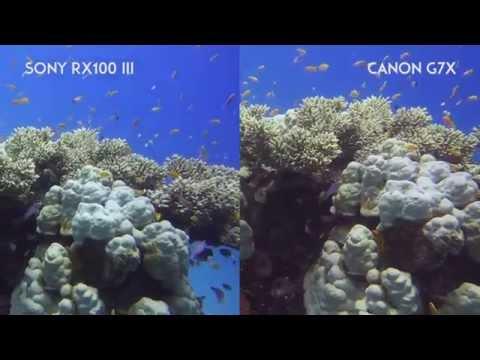 G7X vs RX100III - Underwater Video Comparison