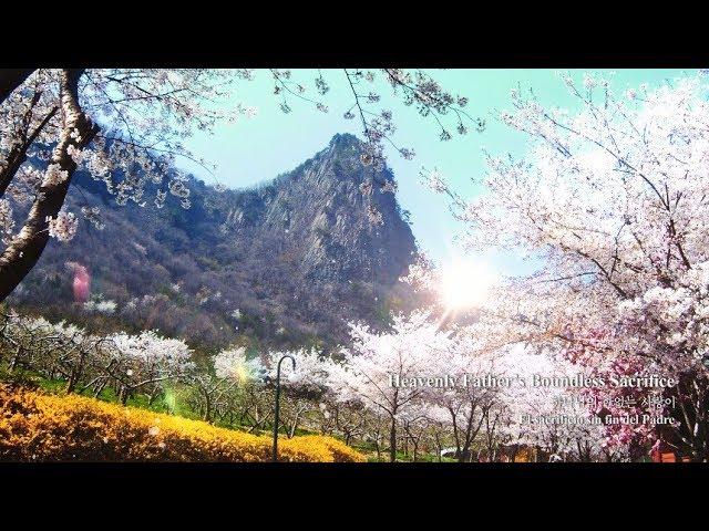 〖NEW SONG〗Heavenly Father's Boundless Sacrifice 하나님의 한없는 사랑이 ▷ Ahnsahnghong, God the Mother