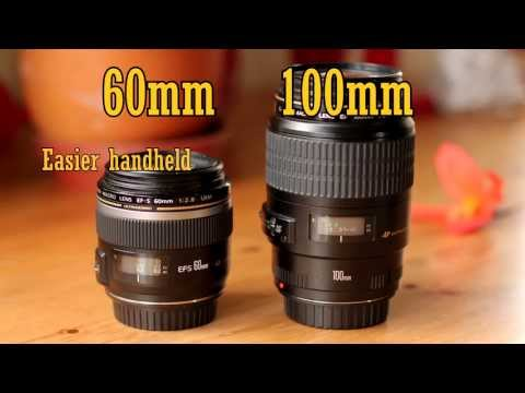 Canon EF-S 60mm f/2.8 USM Macro Lens Review (with samples)
