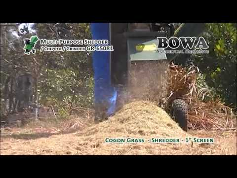 Shredding Cogon Grass