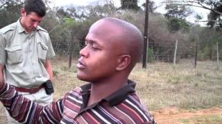 Community Development Programs Phinda Game Reserve Kwazulu Natal South Africa