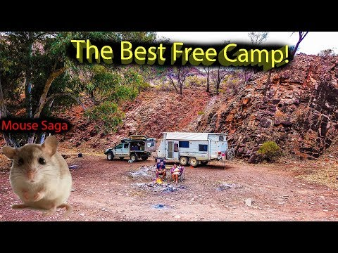This Is FREE? Flinders Ranges. Ep.46 - Free Camping Roadtrip Australia