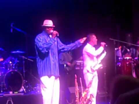 What's Goin' On- Clinton Ellison Jr. - Darren Motamedy & The Groove Crew